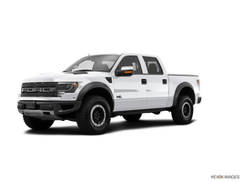 2014 Ford F-150 Platinum in Blountstown, Florida